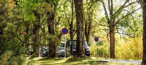 Det er satt opp parkering forbud-skilt i Syverudveien opp til Ås kirke, noe ikke alle bilister respekterer.