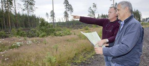 I NATUREN: Ordfører Knut Gustav Woie tenker seg at et nytt fengsel kan bygges der kommunen båndla et område til flyplass for mange år siden. – Dessuten er natur, kanskje i tilknytning til dyr, et poeng i rehabiliteringen av fanger, mener han. Daglig leder i Eidskog Næringsservice, Thor Torp (nærmest) er enig. Foto: Kjell R. Hermansen