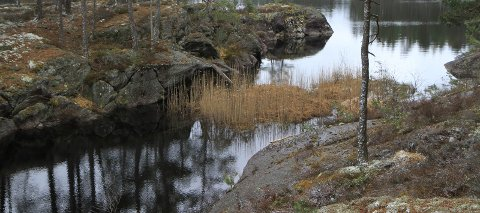 ANKERFJELLA: Områdene i dette bindet av «Fjella i Østfold» har flere store verneområder. Dette er fra Fuglen naturreservat i Ankerfjella.Foto: Privat