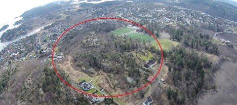 HØGENHALL: Kommunen planlegger 250 boliger i randsonen av Høgenhalltoppen. (Privat dronefoto)