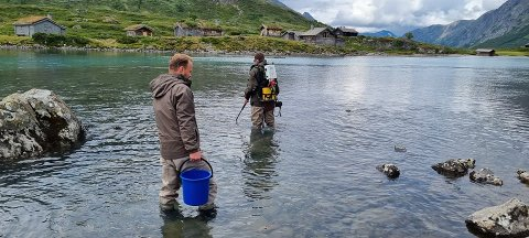 Forskere fra NINA, Stein Ivar Johnsen (t.v) og Kim Magnus Bærum, har vært på Gjendeosen for å studere forholdene. Både Gjendeflua og fisken skal under lupen.