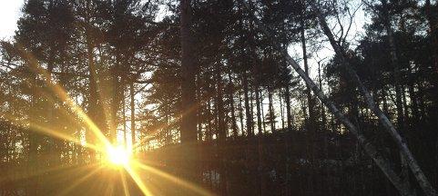 SOLA: Sola står på sitt laveste nå, men nå går det mot lysere tider.