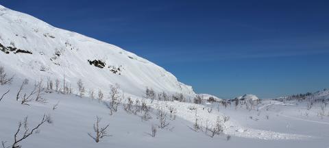 SKREDFARE: I slike bratte skråninger er det fare for skred når snøsmeltingen går fort.