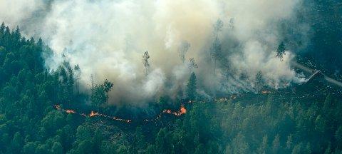 Ljusdal, Sverige 20180718. Flybilder fra brannen rundt Ljusdal i Sverige, onsdag. Foto: Maja Suslin / TT / NTB scanpix