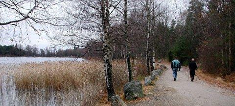 Skal beholde markagrensen: Politikerne vil bevare Fredrikstad-marka, og dette er et viktig premiss for kommuneplanen. (Arkivfoto: Terje Antonsen)