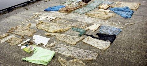 Mageinnhold: Ingen glemmer Sotrahvalen i 2017, og all plasten som til slutt tok livet av dyret. Foto: Nettavisen