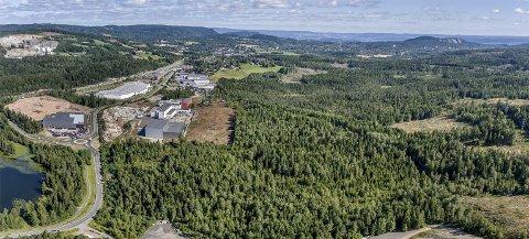 AVKLARING: Spørsmålet er om denne skogen mellom næringsområdet på Gjellebekk og motorsportanlegget i Leirdalen skal omdisponeres til næringsområde eller helårsanlegg for ski. NILS MAUDAL