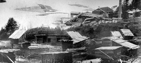 Sagbruk: Fra 1882 til 1930 var det sagbruk i Gansvika. I dag viser et sagbruksmuseum i hovedbygningen en del av virksomheten.