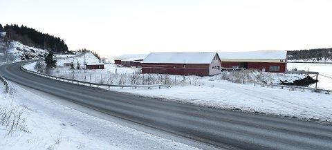 E6-BETONGEN SKAL LAGES HER: Betong Øst ønsker å bygge en betongfabrikk på Langstein havn for å forsyne E6-prosjektet mellom Stjørdal og Åsen.