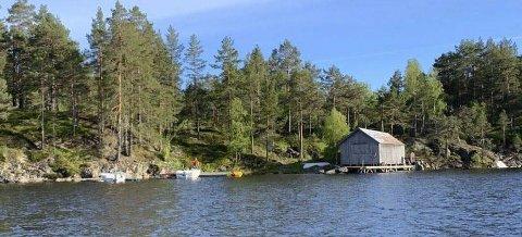 Nye hytteplaner: Grunneier Olav Aas har planer fra dette området. Bildet er fra fjorden mot nordsiden av hytteområdet (bygningen Eidsaga).
