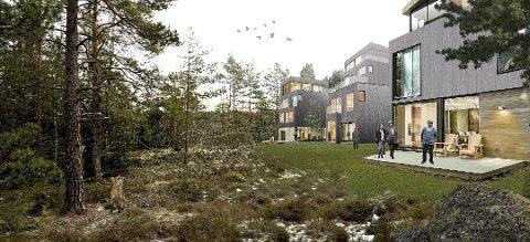 BOLIGPLANER: Hersleth har planer om å bygge inntil 1000 boliger over tid på Varna Skog i Våler. Det skaper bekymring blant innbyggere.