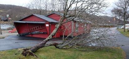 VELTET: Et tre på Steinsnes Camping måtte gi tapt mot de sterke vindkastene lørdag morgen. Velten førte ikke til skader på bygg eller personer.
