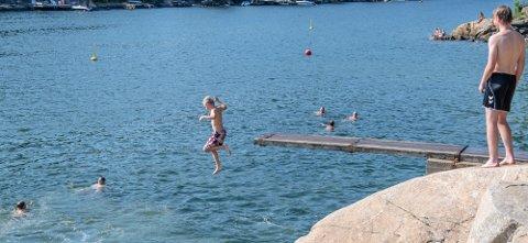 BEDRE FROHOLD: Mer oksygenrikt vann dypere i Bonnefjorden betyr at flere fiskearter og reker kan leve der.