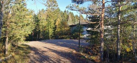 Søndag blir det høytidelig åpning av den nye lysløypa mellom vanntårnet i Trondalen (bildet) og Sprinklet i Gressvikmarka.