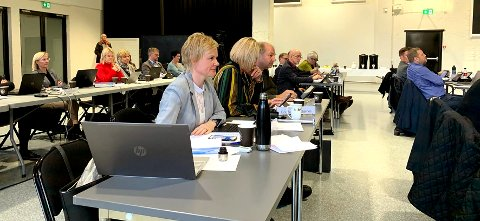 KOMMUNESTYRET: Magdalena Lindtvedt ville endre på godtgjørelsen til de folkevalgte i kommunestryret.
