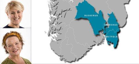 Viken er en sammenslutning av fylkene Østfold, Akershus og Buskerud. Tonje Brenna fra Jessheim (32) fra Jessheim blir fylkesrådsleder og den  mektigste politikeren. Camilla Eidsvold (55) fra Fredrikstad blir fylkesråd for kultur og integrering.