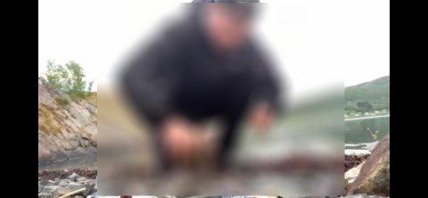 Den unge mannen steiner måseungen på brutalt vis. Videoen spres for tiden på sosiale medier.