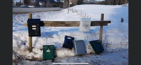 Postkassene i bildet er blant dem som ble utsatt for hærverk natt til fredag. Akkurat disse i bildet hører til i Saksumdal.