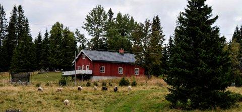 KONSESJON: Oslo-par har fått konsesjon på landbrukseiendommen Øverengen.