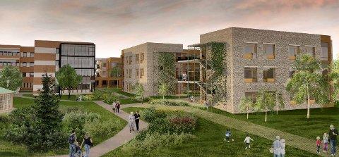 NYBYGG: Den nye bygningsmassen på Nygård vil koste cirka 300 millioner kroner (Illustrasjon: Planforum Arkitekter)