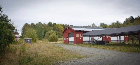 Gartneritomt: 146 boenheter er planlagt bak gamle Seim Gartneri på Høyendal.