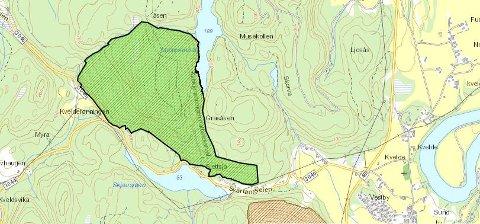 NATURRESERVAT: Området som nå har blitt naturreservat ligger rett nord for Skjærsjøen og Svartangeien.