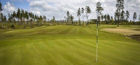 GRØNN GLEDE: Hvam Golfklubb venter på tilbakemelding fra fylket på kravene de har satt fram.