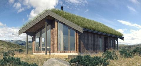Blefjell hytteutvikling skal bygge ut 39 nye hyttetomter. Første visningshytte skal bygges i august.