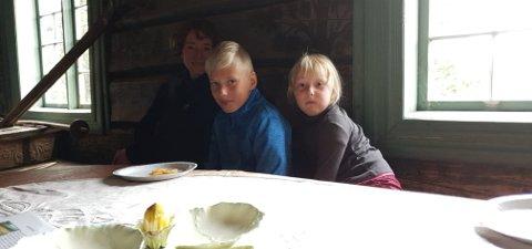 Eva (5) og William  (10) Kjærgaard sammen med mor Marit Widding koste seg på åpen dag på bygdetunet.