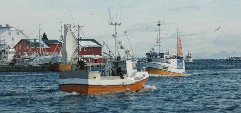 SJØMAT: Norges Råfisklag ønsker videofilmer fra ungdom som beskriver hva norsk sjømat betyr for dem
