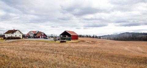 Boligtomten som ønskes fradelt ligger cirka en kilometer sør for gården, i området som skimtes helt i bakgrunnen til høyre på bildet.