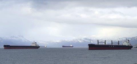 I kø: I mai måned ble det skipet 2,37 millioner tonn jernmalm ut over Narvik. I LKABs statistikker finner man ingen høyere registreringer. Dette bildet er tatt en tilfeldig dag i mai, og illustrerer godt at etterspørselen etter LKABs jernmalmsprodukter er svært høy.Foto: Fritz Hansen