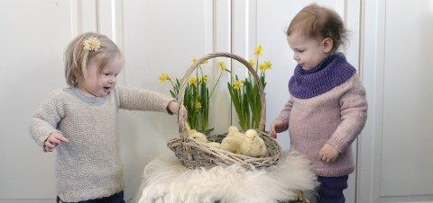 Vårtegn: De to gode naboene Alma Othelia Reisjaa Borstad (16 mnd.) og Ada Wøien Bergerud (2) fra Finstadbru, ønsker Indres lesere god påske med ekte påskekyllinger.