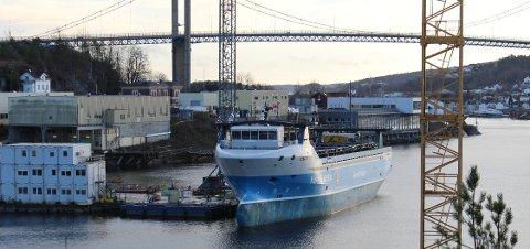 Verdens første førerløse containerskip «Yara Birkeland» ankom lørdag ettermiddag Trosvik Maritime i Brevik der den skal ligge noen uker før videre uttesting av båten i Horten. Skipet skal offisielt overleveres fra Vard til Yara.