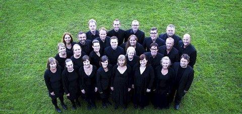 TIL KNARVIK: Søndag kveld held Bergen Domkor konsert i Knarvik kyrkje. Dirigent er Kjetil Almenning.