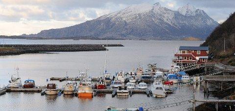 Tiltak: Steigen kommune har fått inn anbud på to jobber for å bedre forholdene i havna i Helnessund. Foto: Øyvind A. Olsen
