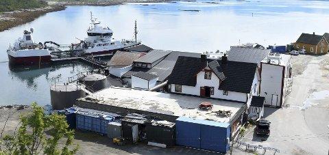 Ny aktivitet: Det jobbes for å få ny aktivitet på Skutvik når lakseslakteriet blir lagt ned i 2018.