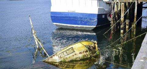 Overgrodd: Den utrangerte fiskebåten bærer tydelig preg av å ha ligget lenge under vann.Foto: Johan Votvik