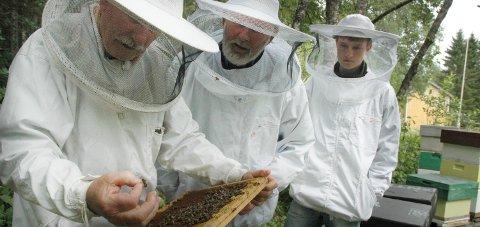 Kald vår: Birøkter Per Soknes (t.v.) tror årets honning-fangst blir dårligere enn i fjor. Foto: Tore John Andreassen
