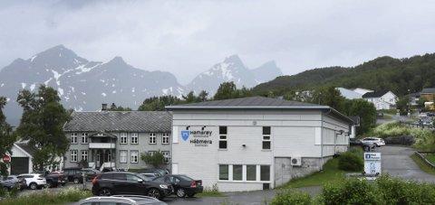 God søkning: Stillingen som arealplanlegger på Hamarøy rådhus er tydeligvis attraktiv. Foto: Øyvind A. Olsen