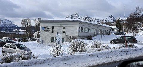 Vil søke: Administrasjonen på rådhuset i Hamarøy kommune har bestemt seg for å søke om midler for å kartlegge hagelupiner.