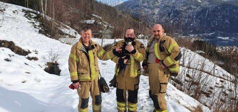 SAT FAST: Hunden Misa hadde kome inn eit røyr og sat fast. Då rykte brannvesenet ut. F.v. Geir Ove Sva, Nils Espeseter og Leidulf Øyre.