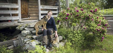 Bonderomantikk: Odelsjenta Eivor Knutsrud (29) vokste opp på gården i Kongsvinger. Etter å har gått veterinærstudiet i Slovakia har hun kommet tilbake til kjente trakter og                       flyttet inn på gården. Nå leier hun ut jorda og jobber med å etablere seg som veterinær. – Jeg jobber på en måte for å holde liv i gården. Gården min er så liten at jeg ikke kunne levd av driften uansett, sier hun. Bilder: Ylva Seiff Berge