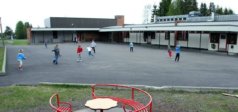 SMÅTT: Det er i dag 75 elever ved Disenå skole. Lærerne der vil bevare skolen. Foto: Petter Geisner