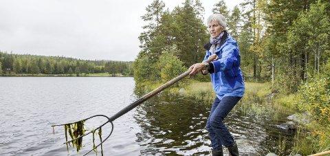 Krever svar: Hytteeier Sigrunn Elseth er av dem som har engasjert seg i algeveksten i Bæreia.Foto: Kjell r. Hermansen