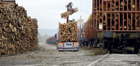 TRENGS NYE TILTAK: Kapasiteten på tømmerterminalen på Norsenga er sprengt.Foto: Ole-Johnny Myhrvold (ARKIV)