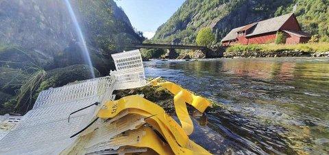 Grønsdal: – Det har vist seg at elva i dette området er veldig uroleg, seier regional koordinator Sven-Helge Pedersen, om kvifor fleire av boksane er vekke. Foto: Genbank Hardangerfjord