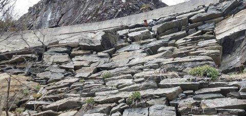 Dårleg standard: Frå området Utføreberget på vegen langs Reinsnosvatnet.foto: Einar riise