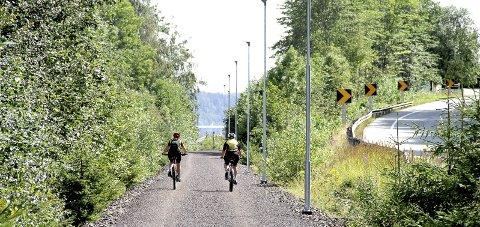 GJENGRODD: På deler av strekningen Sjøskogen- Tvillingbru. Foto: Lars Ivar Hordnes