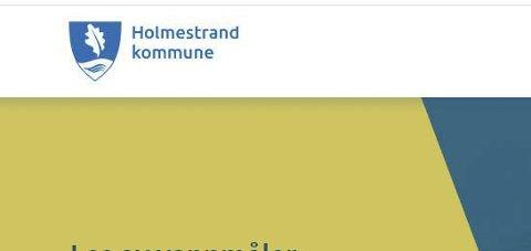 Blå igjen: Nå er kommunevåpenet i riktig blåfarge igjen.skjermdump: Holmestrand kommune.no